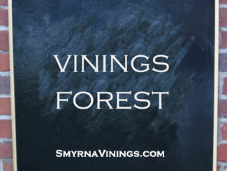 Vinings Forest Homes