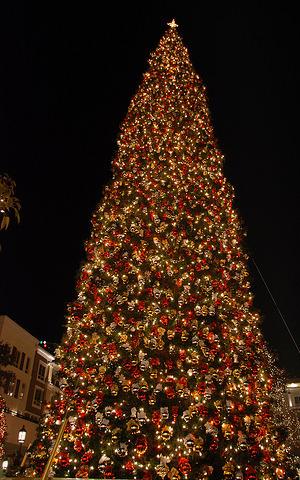 2013 Christmas Tree Lighting at Emory-Adventist Hospital